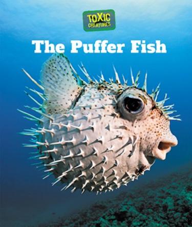The puffer fish cavendish square publishing for Square fish publishing